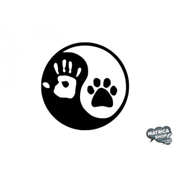 Basset hound matrica 1