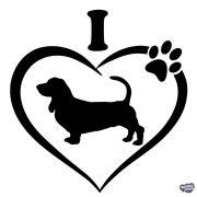 Basset hound matrica 5