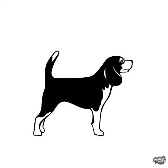 Beagle matrica 5