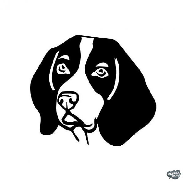 Beagle matrica 8