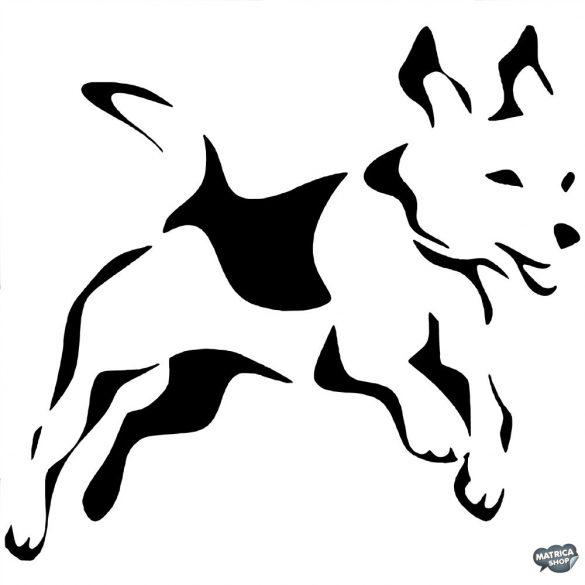 Beagle matrica 12