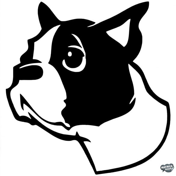 Boston terrier matrica 1
