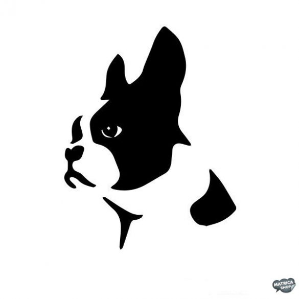 Boston terrier matrica 5
