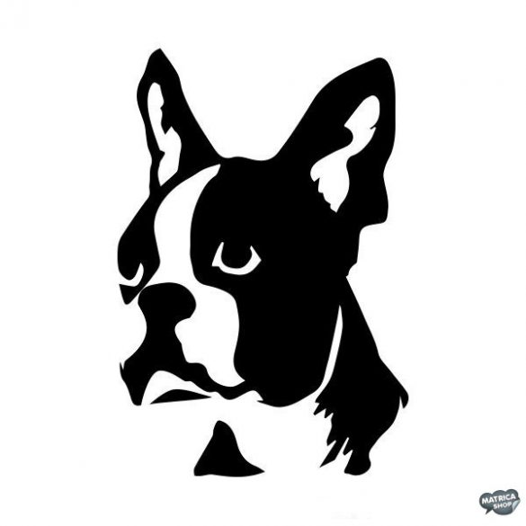 Boston terrier matrica 7