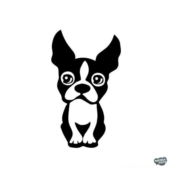 Boston terrier matrica 9