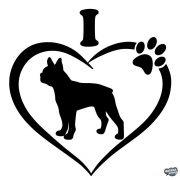Boston terrier matrica 10