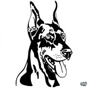 Dobermann matrica 2
