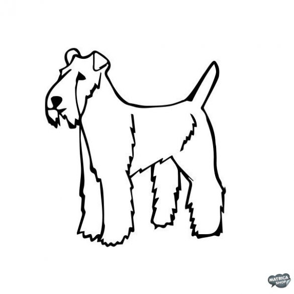 Foxterrier matrica 6
