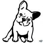 Francia bulldog matrica 4