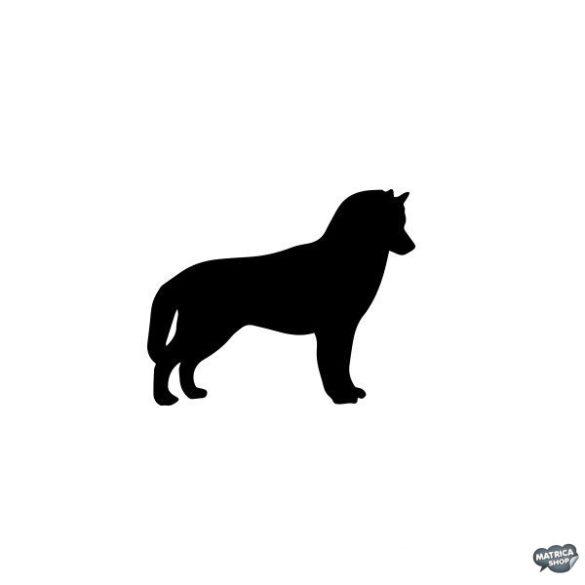 Husky matrica 9
