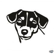 Jack russel terrier matrica 1