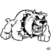 Angol bulldog matrica 5