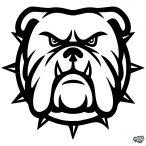 Angol bulldog matrica 7