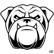 Angol bulldog matrica 9