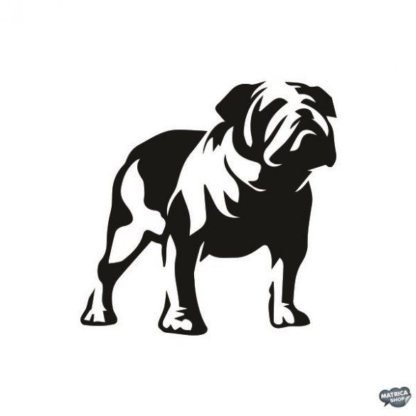 Angol bulldog matrica 11