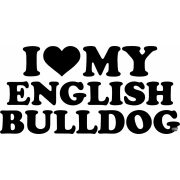 Angol bulldog matrica 21