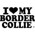 Border collie matrica 13