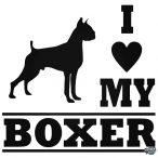 Boxer matrica 17
