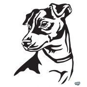 Jack Russel terrier matrica 11