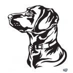 Labrador matrica 16