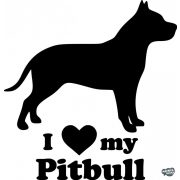 Pitbull matrica 13