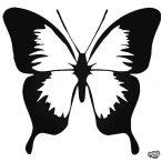 Pillangó matrica 4