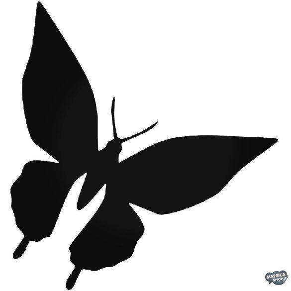 Pillangó matrica 9