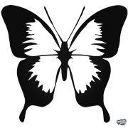 Pillangó matrica 10