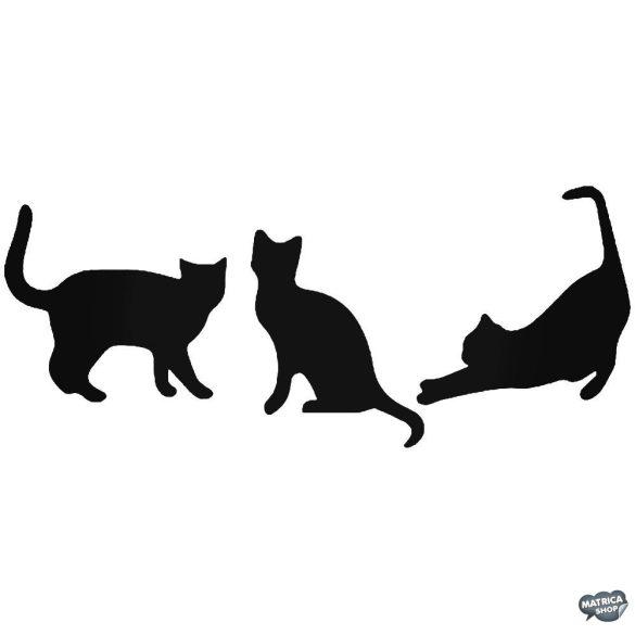 Macskacsalád matrica
