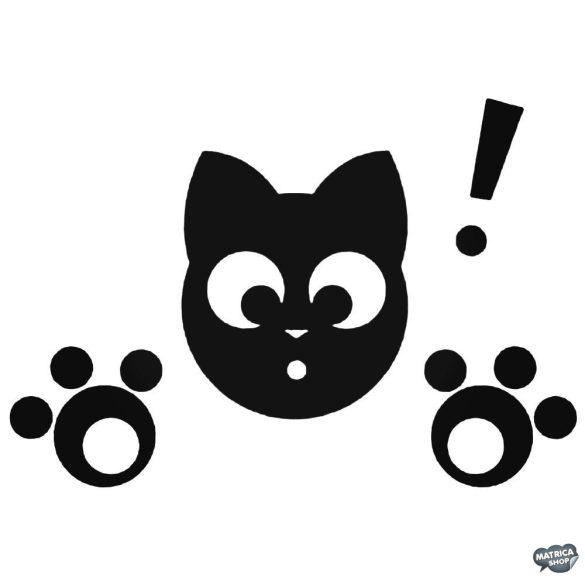 Meglepődött Macska matrica