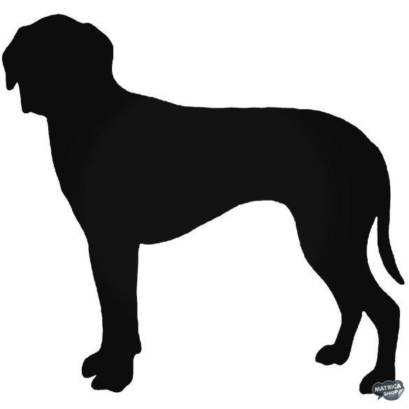 Hamilton kutya matrica