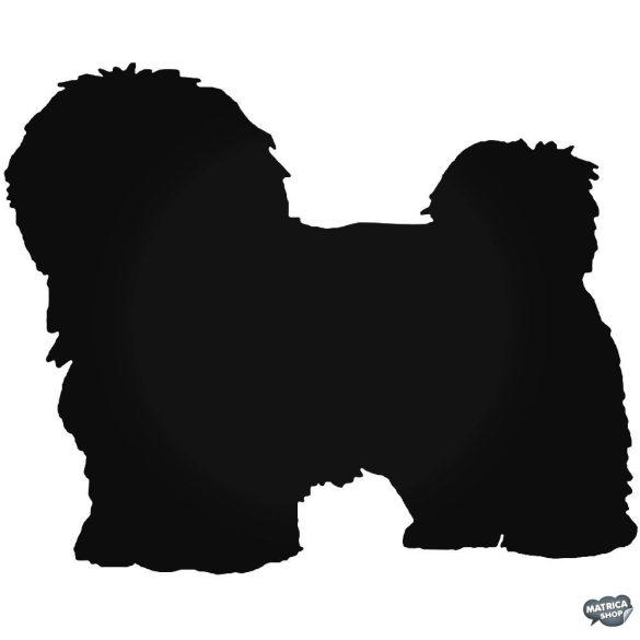Havanese Kutya matrica
