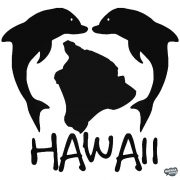 Hawaii delfinek matrica