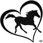 Ló a szívben matrica