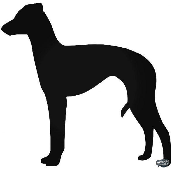 Olasz agár kutya matrica