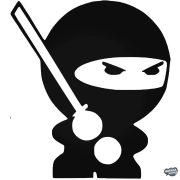 Kicsi ninja matrica