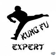 Kung-Fu Expert matrica