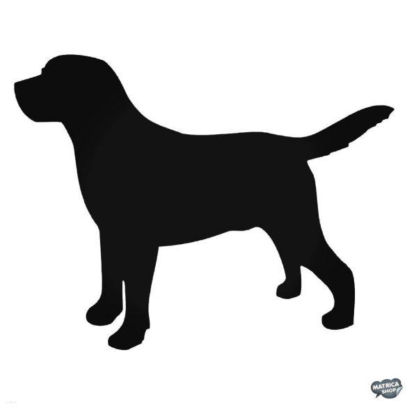 Labrador matrica 9
