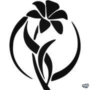Lily virág Autómatrica