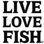 Live Love Fish matrica