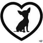Love Chihuahua matrica