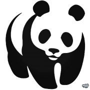 "Panda állat ""3"" matrica"
