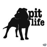 "Pit Life ""1"" matrica"