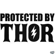 Protected by Thor Autómatrica