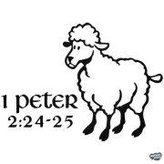 1 Peter bárány Autómatrica