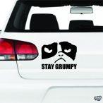 Stay Grumpy Macska matrica