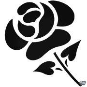 """Rózsa """"2"""" Autómatrica"""